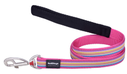 Red Dingo Hot Pink Stripe Dog Dog lead